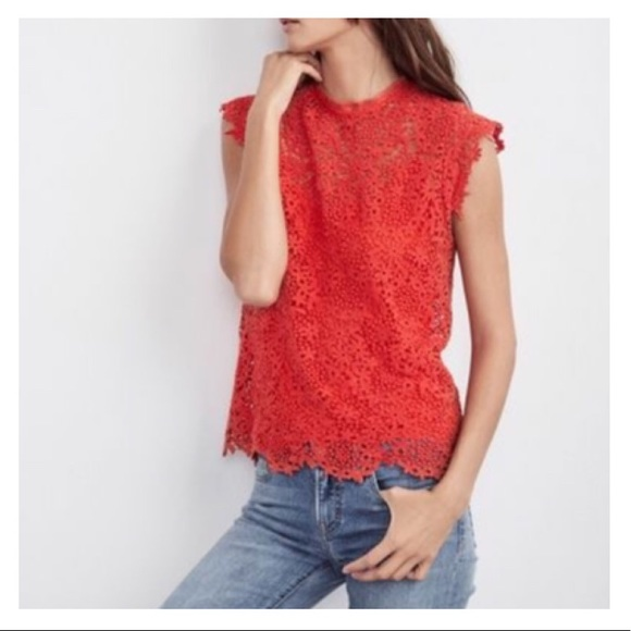 Velvet By Graham & Spencer Lace with Cami Top